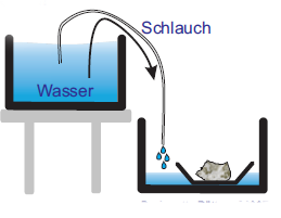 Das Boot wird durch das einströmende Wasser angehoben.